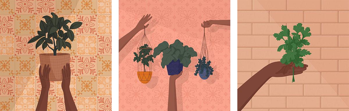Plants trio